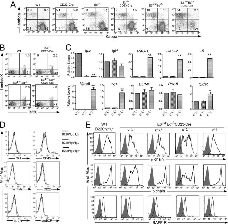 IgD Antibody in Flow Cytometry (Flow)