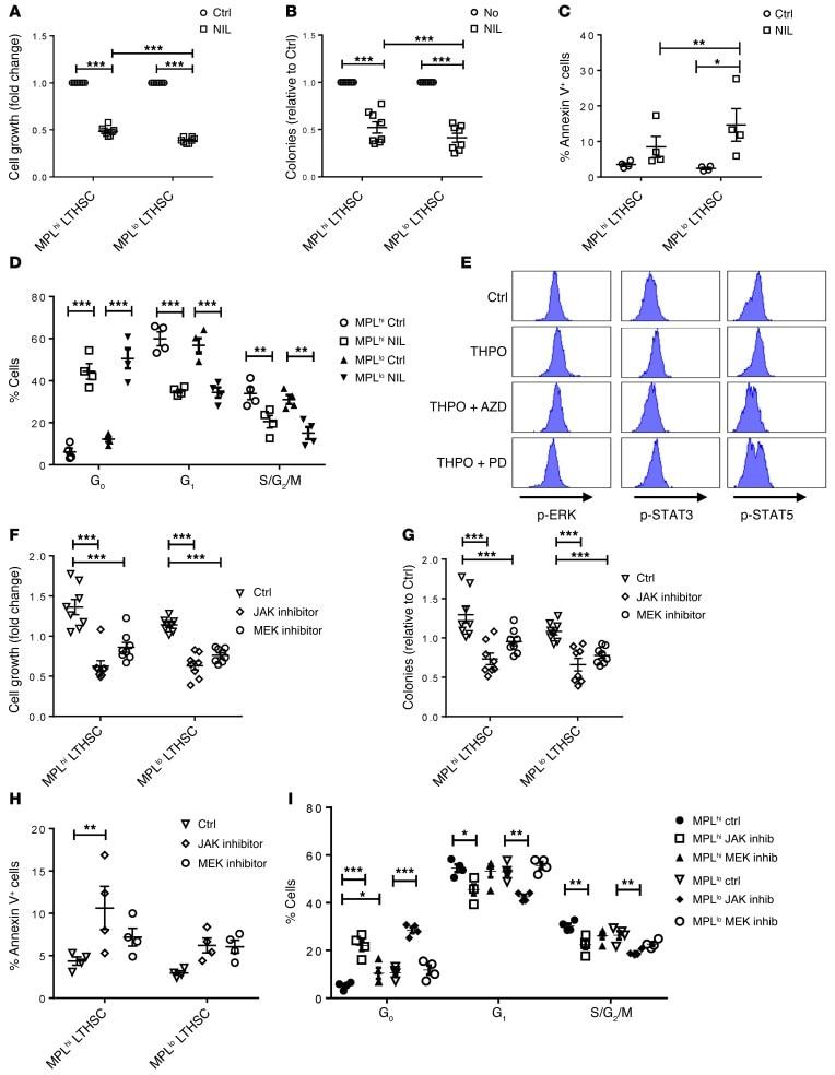 Phospho-ERK1/2 (Thr202, Tyr204) Antibody